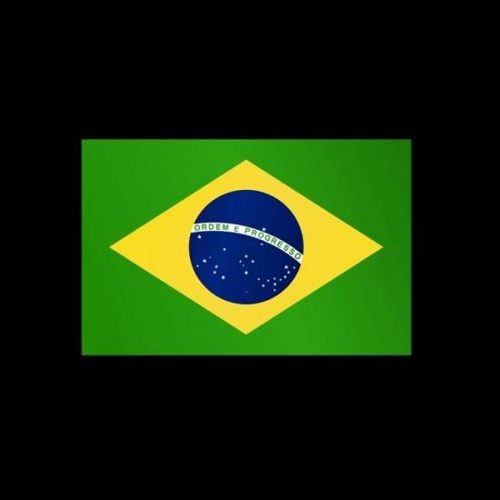 Flagge Weltweit, Hochformat-Brasilien-300 x 120 cm-160 g/m²-mit Hohlsaum für Ausleger
