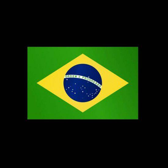 Flagge Weltweit, Hochformat-Braslien-600 x 200 cm-110 g/m²-mit Hohlsaum für Ausleger